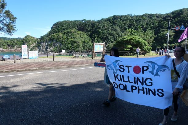 Protestors march against local dolphin hunts