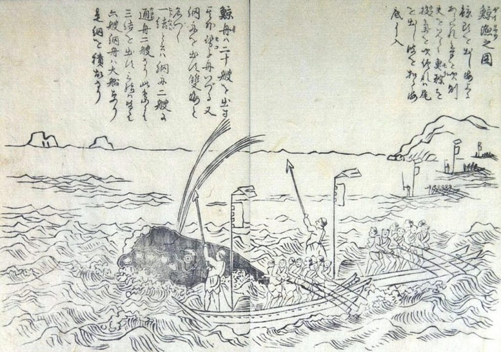 Sketch of early Japanese whaling