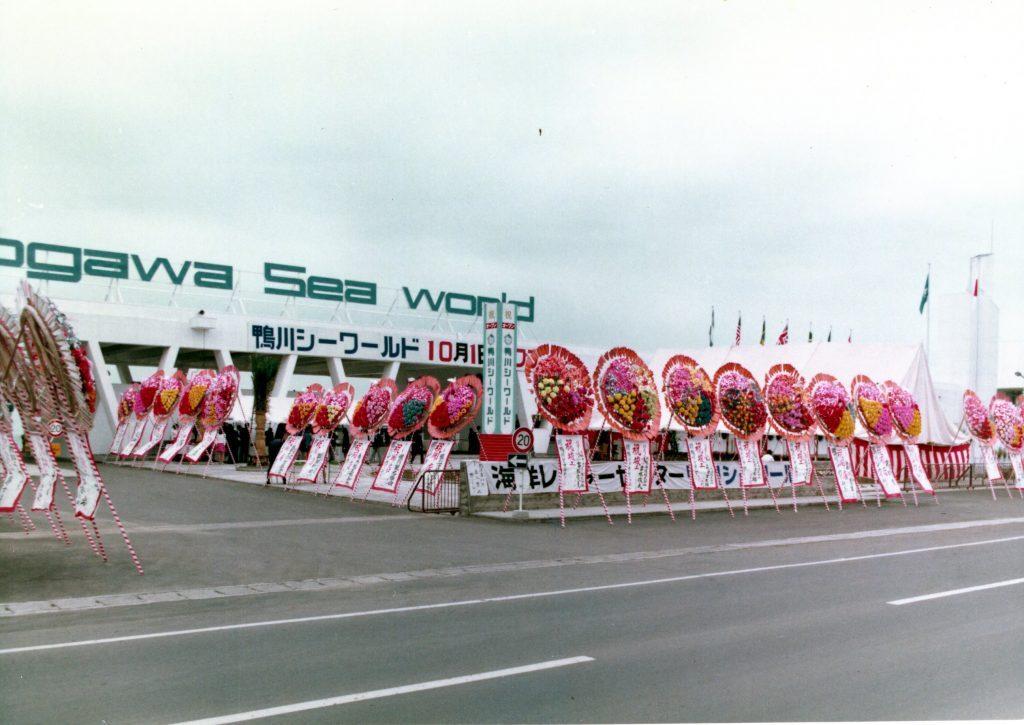 Kamogawa Sea World on its opening day in 1970