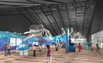 Displays highlight both whale biology and Japanese whaling culture